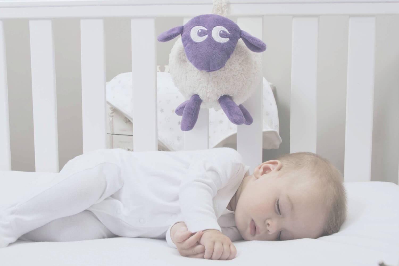 Baby produkter Ewan lilla - Sweet Dreamers for din baby